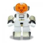 """Интеллектуальный робот """"ECHO"""""""