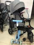 Велосипед трехколесный Exotik (серый)